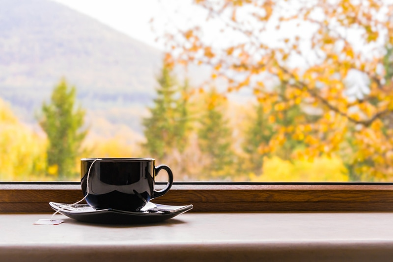 a cup o tea in front of a window with autumn view, why do i need a humidifier in the fall?